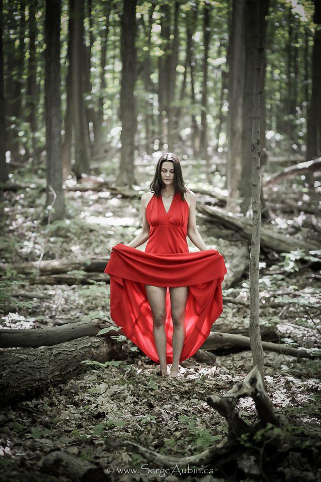 """Projet """"Dames de la Forêt"""" - Véronique"""